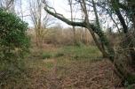 Photo 23 - Land Adjacent to Todhurst