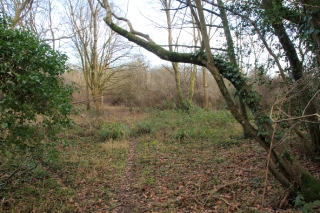 Photo 23 - Land Adjacent to Todhurst
