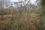 Photo 24 Land adjacent to Todhurst