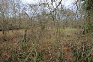 Photo 24 Land adjacent to Todhurst