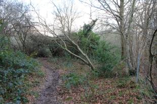 Photo 26 Land adjacent to Todhurst