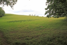 Green Spaces - Nell Ball Hill02