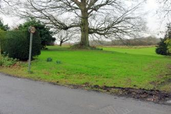 Photo 06: Site entrance - veteran oak