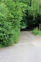 Back Lane (Track)
