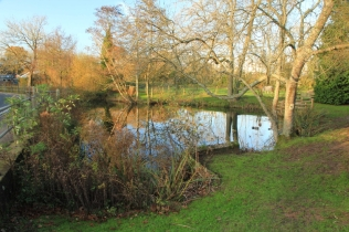 Cox's Pond in winter (Plaistow village pond)