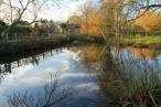 Cox's Pond in winter