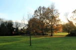 View from the Upper Green to the Plaistow Recreation Ground and childrens' playground.