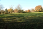 Plaistow Recreation Ground (the lower Green)
