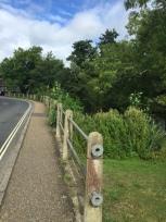 Metal railing on Loxwood Road (Photo: C. Gibson-Pierce)