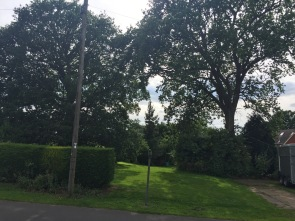 Photo 01: Site entrance - wide gap between two veteran oak trees
